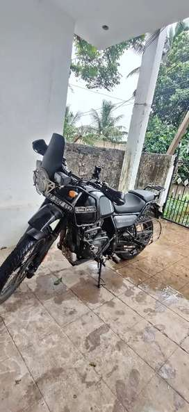 Himalayan bs6  6 months used with good condition
