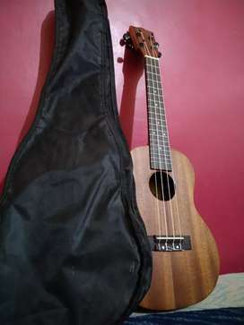 Kadence Ukulele for sale (3 months old)