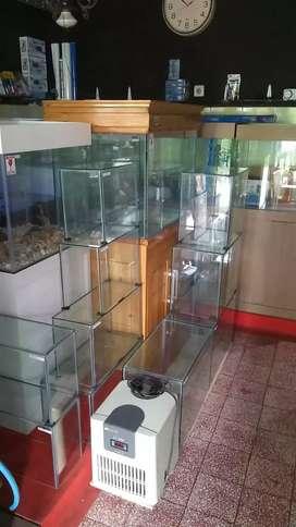 Jual aquarium ikan hias
