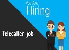 Wanted Telecaller