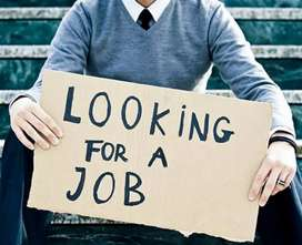 Looking for a Job around Dimapur