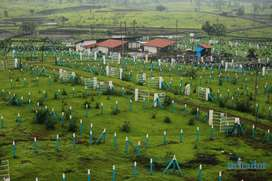 N.A open bungalow plot in Shahapur Mumbai nashik highway touch