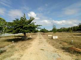 DTCP Approved Land area from 600 sqft to 1800 sqft in Padapai