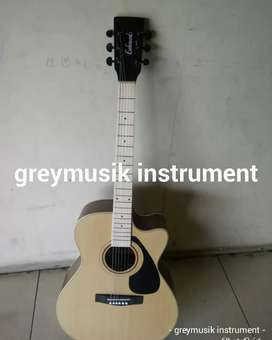 Gitar greymusik seri 1042