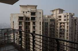 3 BHK Sharing Rooms for Men at ₹9450 in Sector 70, Noida