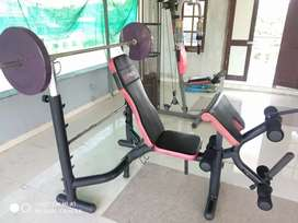 Viva weight bench and home gym machine