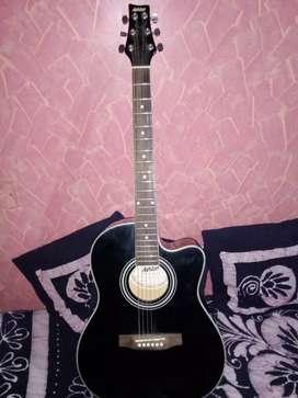 Ashton Aquostic Guitar