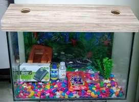 New Aquarium With Accessories
