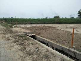 LAND FOR POULTRY SHED, DAIRY FAM