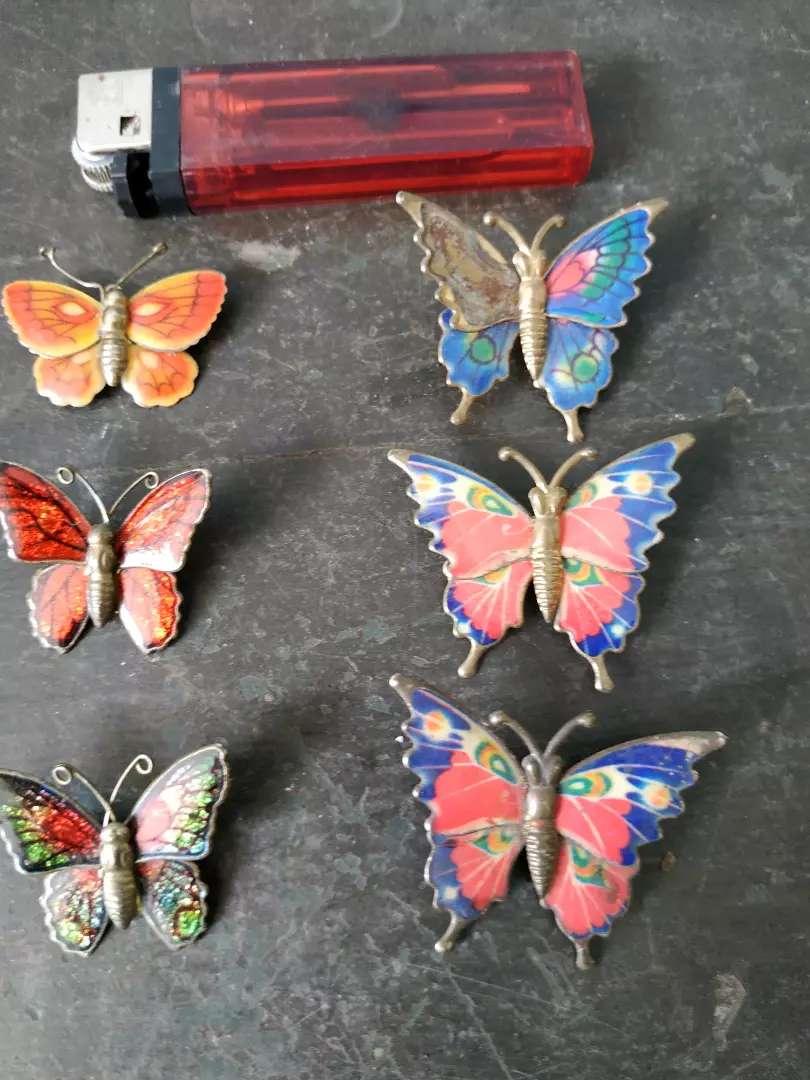 6 bros kupu2 motif 4 macam,