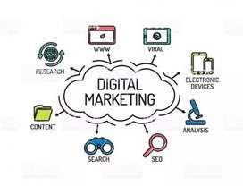 Digital marketing executive required