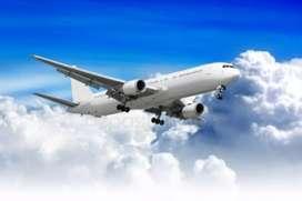 Urgent hiring for storekeeper in indigo airline