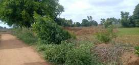 2.35 acre tamarind agriculture land