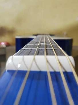 Hertz Guitar- 4010(Blue)