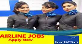 Urgent quirement for airport job vacancy