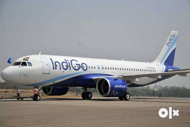 hring for cabin crew staff//ranchi//aviation industry// 0