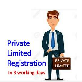 Private Limited/ LLP Company Registration