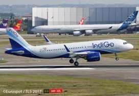 Ground Staff Job vacancy in INDIGO Airlines Job fresher / Experien