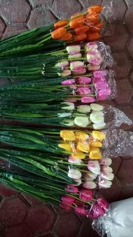 Tulip x 3 small yg bagus n mumer lo