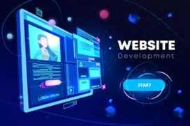 Website development starting from 7000