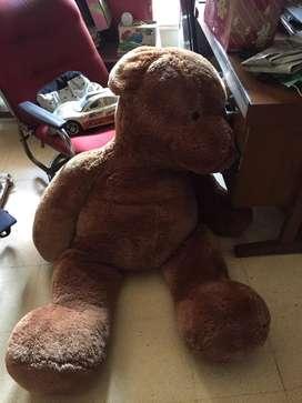 Boneka teddy besar malang