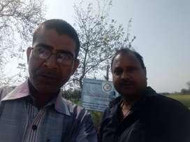 Plots at Patut Bihta near IIT Bihta