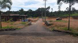 Reasonable Price  Plots For Sale In Mulanthuruthy