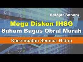 Bimbingan Intens mengenai Bursa Efek Indonesia, Trading dan Investing