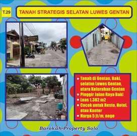 Tanah Strategis Pinggir Jalan Raya  Baki di Gentan Cocok untuk Bisnis