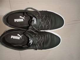 Puma shoes. Two weeks old