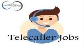 Telugu & Kannada Telecallers