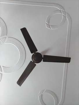 1 pair of fan means 2 fans @ 1000