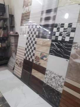 Makrana marble house
