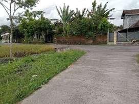 Jual Tanah sawah Jl Godean Km 8 Sidokarto