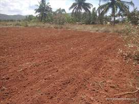 Many Acres of agriland for sale