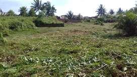 Tanah kosong siap bangun kontrakan