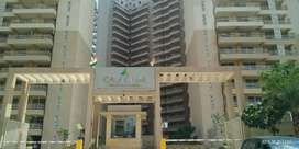 Ready to Move Apartment on Dwarka Expressway
