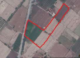27 Kanal Agriculture Land chak 131 SB for Sale