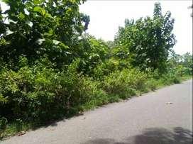 Tanah Murah Tepi Jalan Aspal cck Perumahan/Gudang dkt jln Wates & UIN