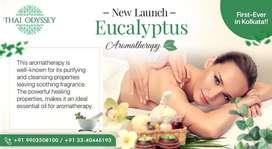 Introducing Eucalyptus Aromatherapy first ever in kolkata