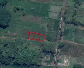 Tanah SHM Pekarangan Dijual Belakang UII Yogyakarta Nego
