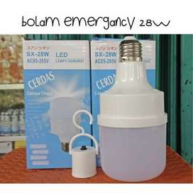 Emergency LED cerdas