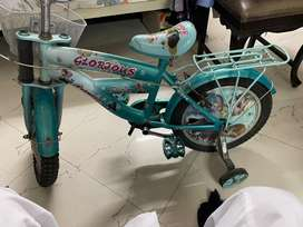 Looking good condition two cycle