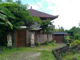 Jual Tanah Sangat Murah Bonus Villa di Bali