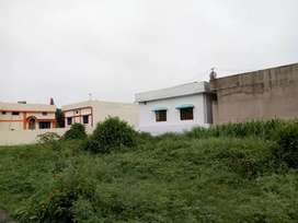 15X55 92Gaj Plot For Sale In Badowala 500Mtrs From On Shimla Bypass