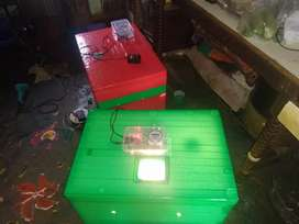 Eggs incubator available