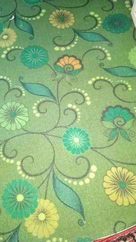 We have carpet in low price