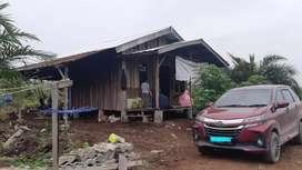 Dijual Kebun Sawit 17Ha(umur 3th) + rumah pondokan baru, SKGR Camat