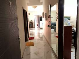 Fully Furnished independent flat only for family or females