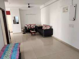 Fully Furnished Apartment on Rent